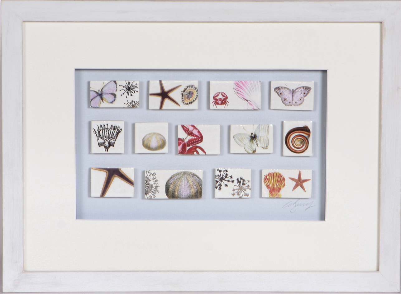 Caroline barnes ceramics these framed ceramic tiles are framed and presented as collections framed tiles are mounted on a contrasting cream mount before being presented in wooden dailygadgetfo Gallery